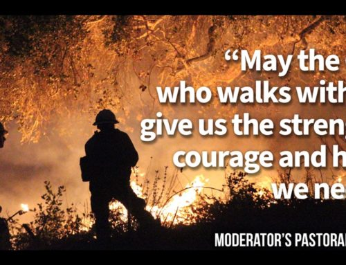 Moderator's Letter – Victorian Bushfires