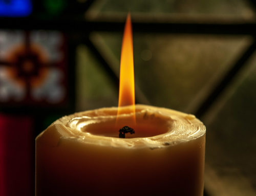 Worship – Pentecost 15A